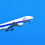 ANAマイルで取得した特典航空券の燃油サーチャージを無料にする方法
